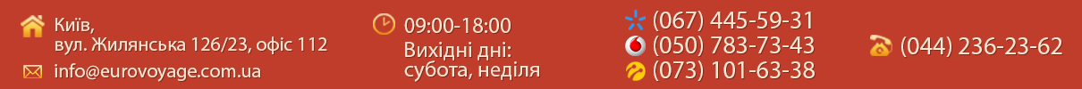 shapka_top.png